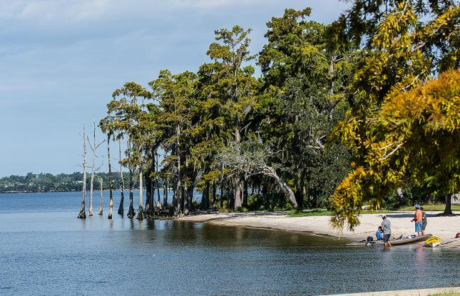 beach_Fontainebleau-State-Park-courtesy-Bill-Lang_LouisianaNorthshore-web
